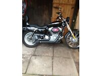 harley davidson sportster 883c low mileage swap jap cruiser vn vzr vl meanstreak