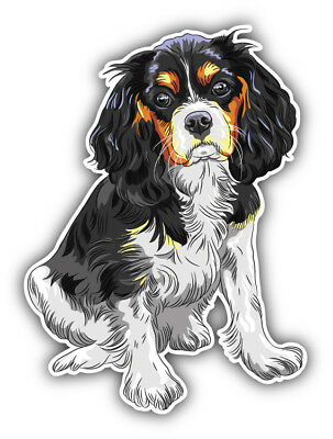 Cavalier King Charles Spaniel Breed Dog  Bumper Sticker Decal - 3'', 5'' or 6'' ()