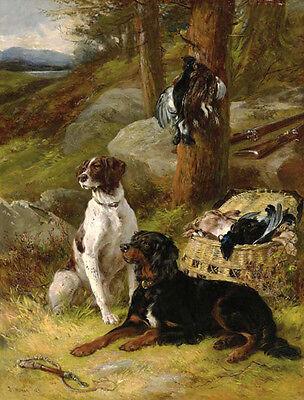GORDON SETTER IRISH RED and WHITE SETTER DOG FINE ART PRINT by James Hardy Jnr