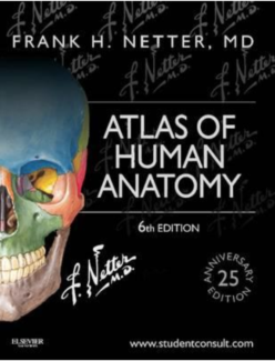 atlas of human anatomy netters textbook - Netters Anatomy Coloring Book