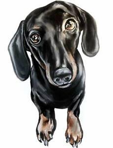 Local Artist - Pet Portraits