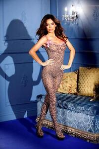 Hot Crotchless Leopard Cheetah Print Bodystocking Sexy Lingerie Bow Bodysuit