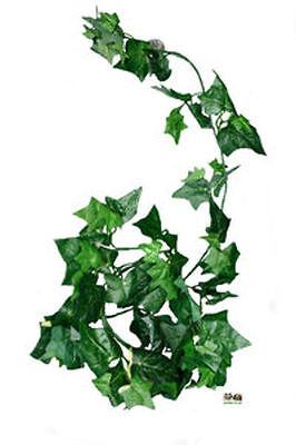 Terrarienpflanze Seidenpflanze Dekopflanze Efeu Grünblatt ca. 40 cm