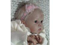 CUDDLES Bountiful Baby kit
