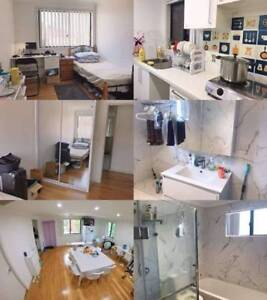 1 room beautiful newly renovated house near station in Ashfield