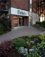 1 Bed Close to Carleton U, Tunney's Pasture, and Little Italy!