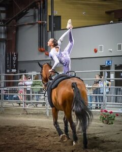 Equestrian Vaulting & English Riding Lessons available