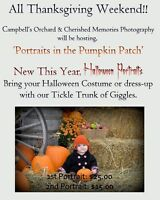 Portraits in Pumpkin Patch & Halloween Portraits