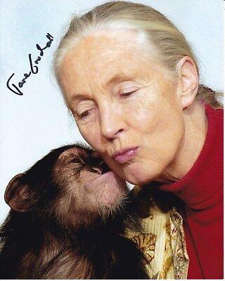 Jane Goodall Signed Photo W  Hologram Coa
