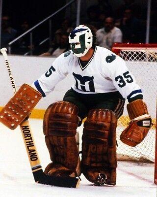 NHL Hartford Whalers Goalie John Garrett Game Action Color 8 X 10 Photo Picture