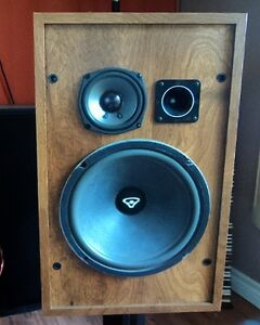 SPEAKER REPAIR / RE-FOAMING: Don't Toss Those Old Beauties Kitchener / Waterloo Kitchener Area image 4