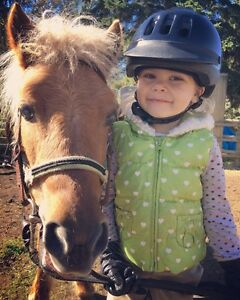 Do you have a child that loves horses?