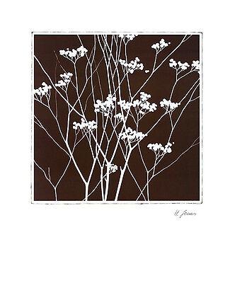 Horst Jonas Autumn Whimsy I Poster Kunstdruck Bild 60x50cm