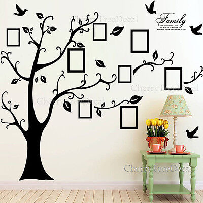 Home Decoration - Huge Family Tree Wall Stickers Birds Photo Frame Quotes Art Decals Home Decor