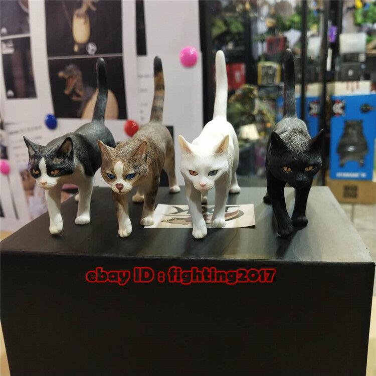 JxK.Studio 1//6 Scale Chinese Cat Felis Catus JXK003 Series Resin Model Cat