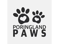 Poringland Paws - Dog Walking & Home Visits - Poringland & surrounding villages - Walker Sitter