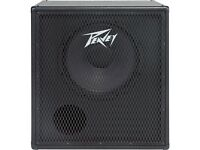 PEAVEY 1X15 300 WATT BASS CAB FREE DELIVERY CHARGE 75 MILES OF CHESTER