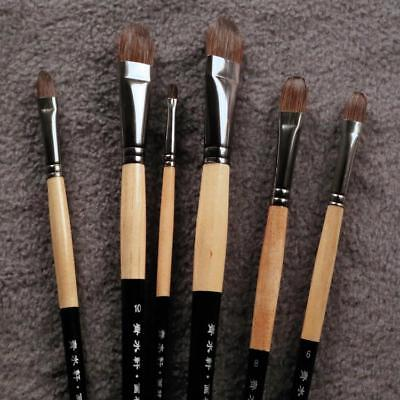 Squirrel Hair Paint Brush 6 Pcs Set Painting Art Supplies Tool Artist Design Arc for sale  Shipping to Canada