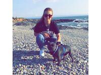 PET SITTING & WALKING CARDIFF