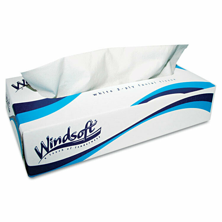 WINDSOFT Facial Tissue in Pop-Up Box, 100/Box, 6 Boxes/Pack 2430