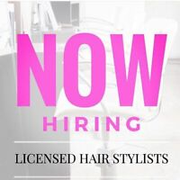 Hairdressers & Hairstylists