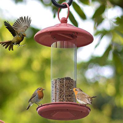 Bird Feeder Wild Outdoor Feeding Station Garden Hanging Food Seed Tray 4586HC - Wild Bird Feeding Station