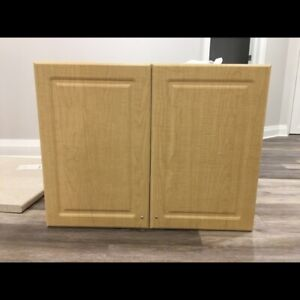NEW Cabinets & Countertop (Frendel Kitchens)