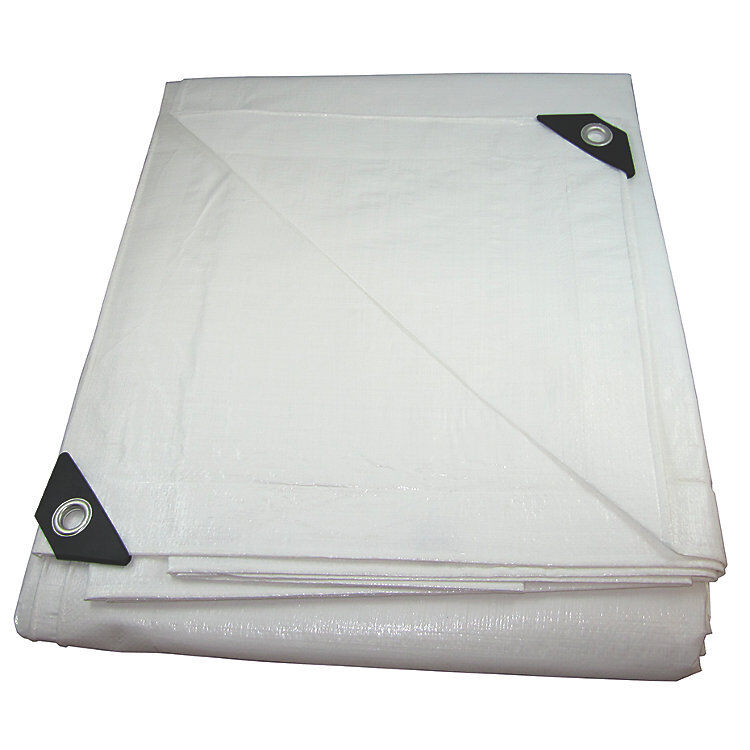 12 mil Heavy Duty Canopy Tarp White Tent Car Boat Cover 12 f