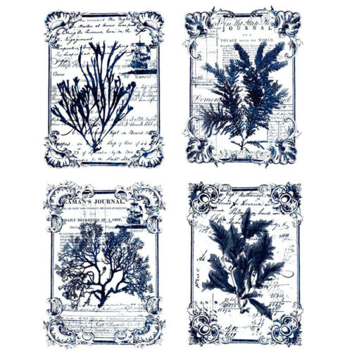Re-Design with Prima SEAWEED Transfer Home Decor - NEW