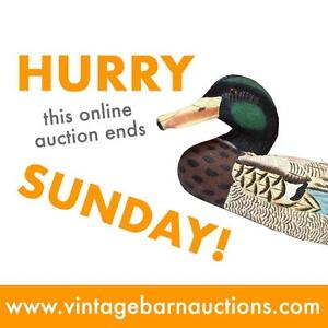 ONLINE AUCTION! Bids Start at $2! Household Goods, Jewelry, Comic Books, Dishes, Electronics and MORE!  300+ LOTS!