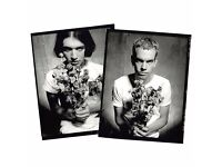 1 ticket for Placebo @ SSE Arena Wembley '20 Years Show' 15th December 2016