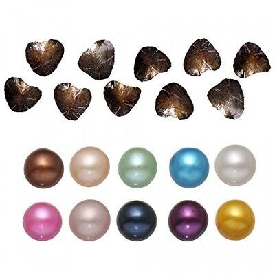 10Pc Freshwater Cultured Love Wish Pearl Oyster With Round Pearl Inside 10
