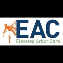 Elevated Arbor Care Cranebrook Penrith Area Preview