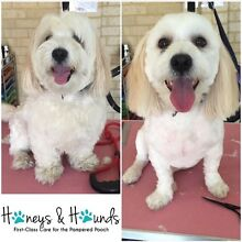 Groomer coming soon to Safety Bay Safety Bay Rockingham Area Preview