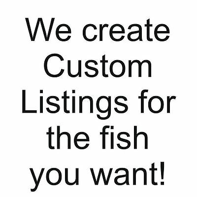 A special listing for another fish lover, glou2423