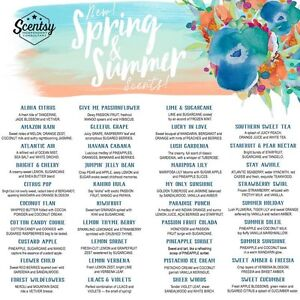 Scentsy's scented wax, warmers and much more Kingston Kingston Area image 5