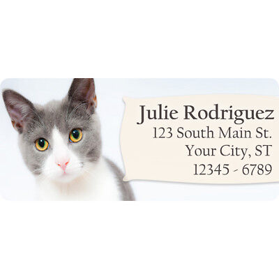 Cat Personalized Return Address Labels Grey And White Short Hair Cat