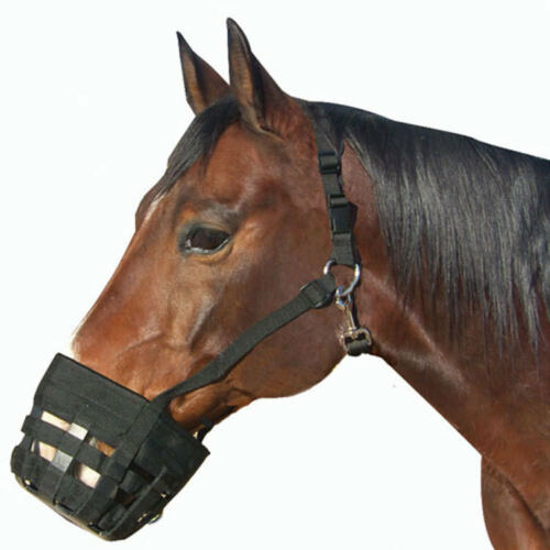 Best Friend Deluxe Grazing Muzzle-Horse