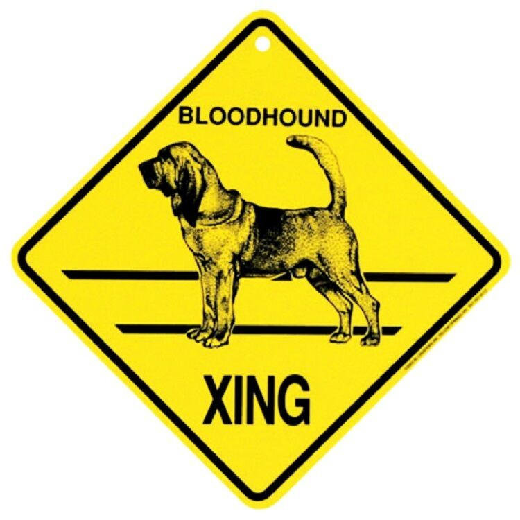 Blood Hound Dog Crossing Xing Sign New Bloodhound