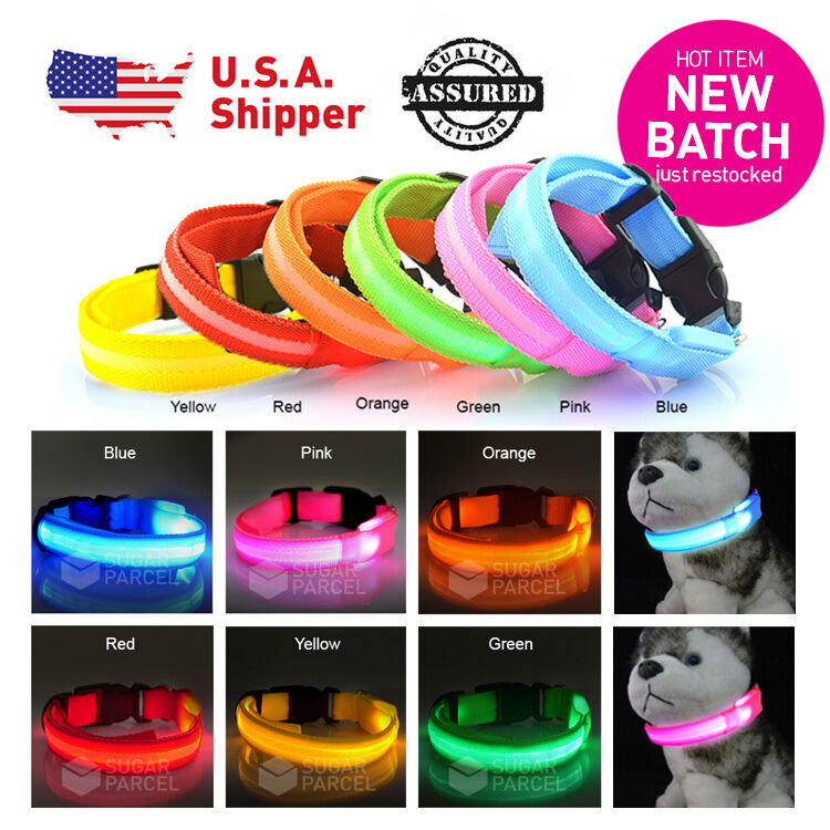 LED Light Up Dog Collar Nylon Pet Night Safety Bright Flashing S-XL
