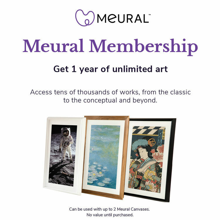 Netgear MCMYA-100PAS Meural Canvas Annual Membership Card Digital Picture Frame