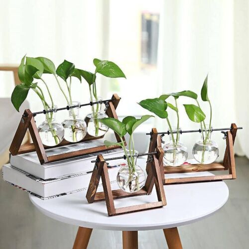 Wooden Plant Stand w Glass Vase Tabletop Glass Planter Hydroponic Plant Stand