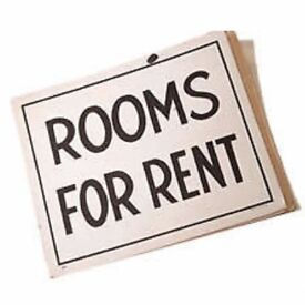 Amazing large double room - low deposit and rent