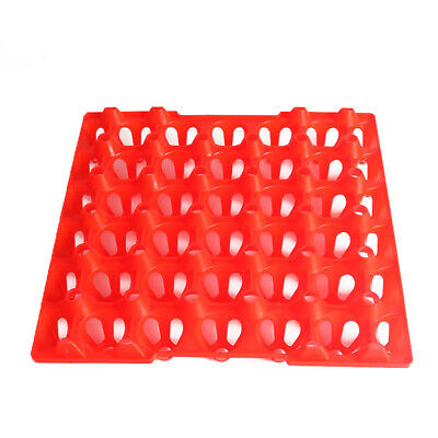 Storage Tray Holds 30 Eggs Incubator Turkey Duck Chicken Breeders Replacement