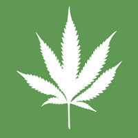 Looking to buy or invest in cannabis dispensary