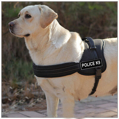 Black & Red Nylon Working Dog Harness Removable Chest Plate & label Patches Working Dog Plates