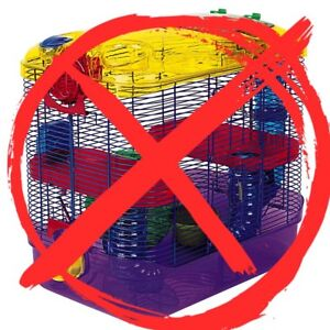 Looking for a hamster cage?