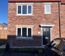 Brand New Modern 3 Bedroom Semi-Detached House, The Pasture, DL5