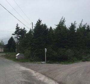 Approved Building Lot In Town Of Holyrood