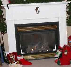 Napoleon Gas Fireplace and Mantel